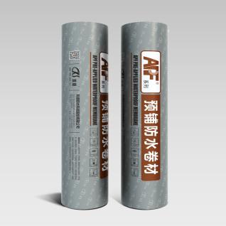 APF-C隧道專用預鋪式高分子自粘膠膜防水卷材(非瀝青)